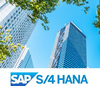 大企業向けSAP S/4 HANAおよび従来型ERP